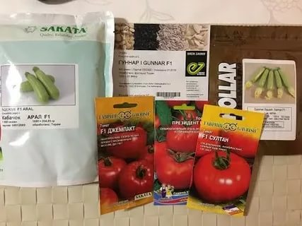 Бизнес на семенах. Как продавать семена овощей голландской селекции в России