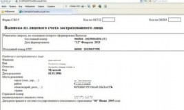 Получить выписку из пенсионного фонда по СНИЛС