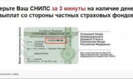 Пенсионный Фонд РФ проверить СНИЛС