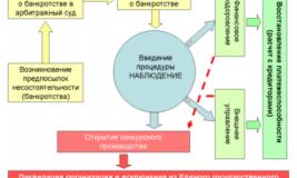 Ведение процедуры банкротства процесс