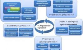Организация системы автоматизации продаж