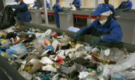 Бизнес по сортировке отходов