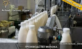Бизнес-идея: производство молока