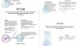 Устав дочернего предприятия ООО
