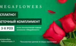 Акции для цветочного магазина