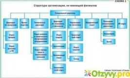 Что значит структурное подразделение организации?