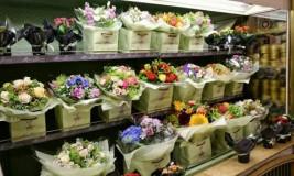 Как открыть цветочный салон? Узнайте, с чего начать цветочный бизнес