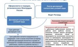 Реестр деклараций по специальной оценке условий труда