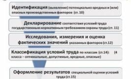Этапы проведения специальной оценки условий труда