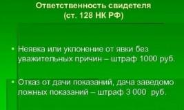128 статья Налогового Кодекса РФ. Ответственность свидетеля